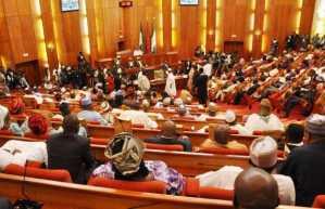 Senate condemns rising cases of mob action in Nigeria